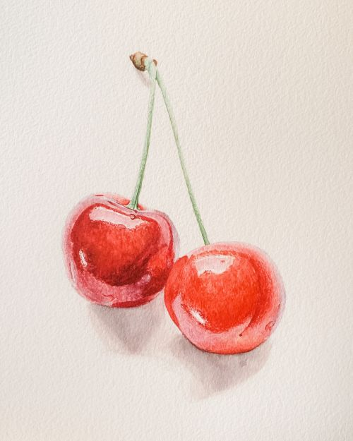 A Shiny Pair - Cherries painting