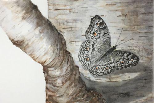 Burch & Butterfly