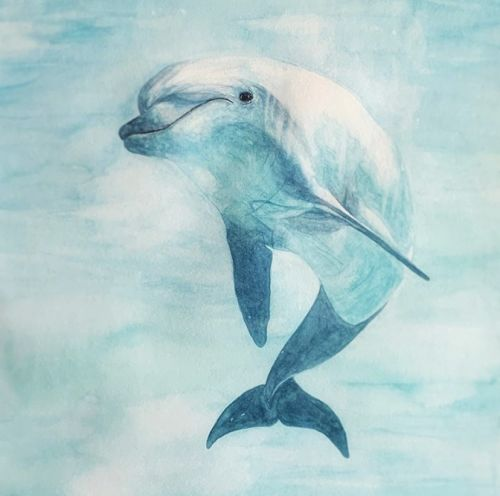 Lauren's Dolphin -Private collection