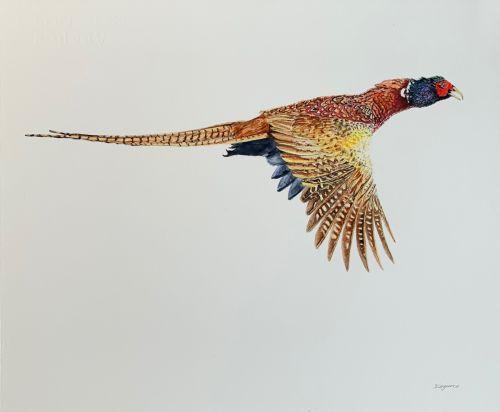 """Autumn Flight"" Pheasant"